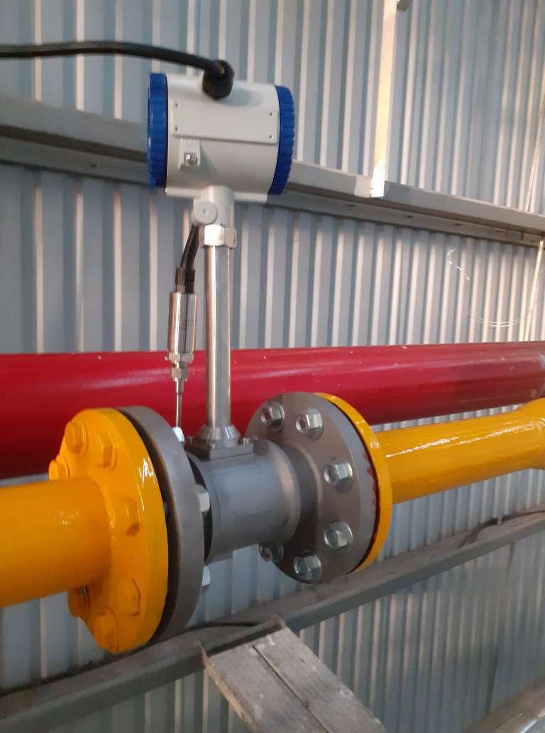 RIF300 Riels | Đồng hồ đo lưu lượng Riels
