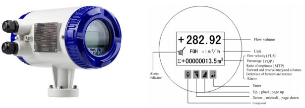 RIF100 Riels   Đồng hồ đo lưu lượng nước sạch Riels