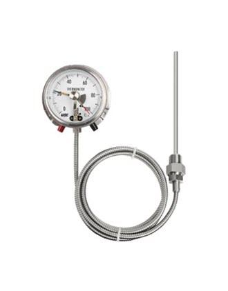 Đồng hồ đo nhiệt độ T761 Wise