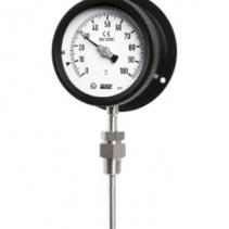 Đồng hồ đo nhiệt độ T222 Wise